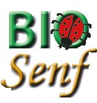 Bio-Senf